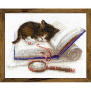 Riolis - Kitten on the Book - 1725 | The Knitting Club